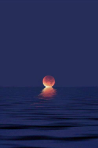 Photo of red moon kissing the ocean.
